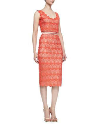 Belle Scalloped Crochet Pencil Dress