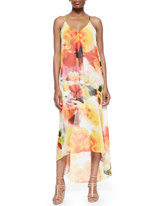 Vandy Printed Maxi Dress