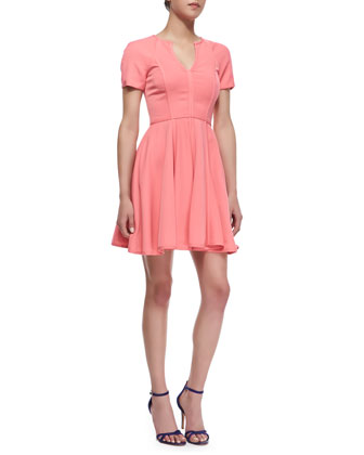Braelyn A-Line Short-Sleeve Dress