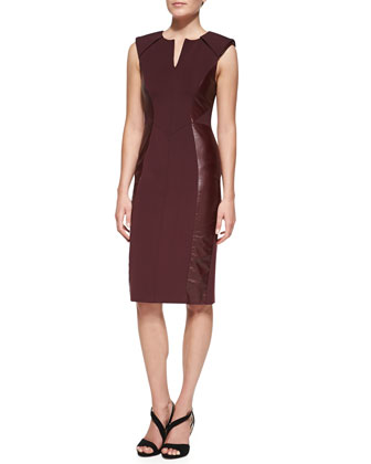 Leather-Paneled Sheath Dress, Port