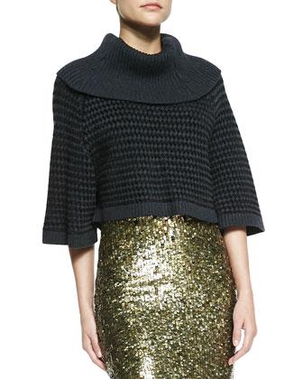 Basket-Weave Raglan Turtleneck & Bryce Sequined Pencil Skirt
