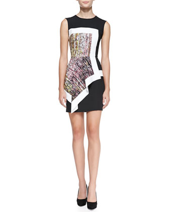 Alessandra Printed/Colorblock Dress