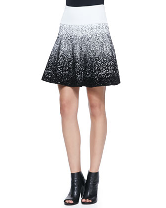 Dorsey Half-Sleeve Knit Top & Mills Ombre Print Skirt