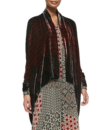 Morra Silk Velvet Jacket & Animalia Long-Sleeve Maxi Dress