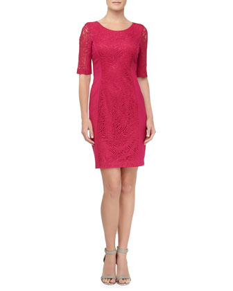Lace Panel Ponte Sheath Dress