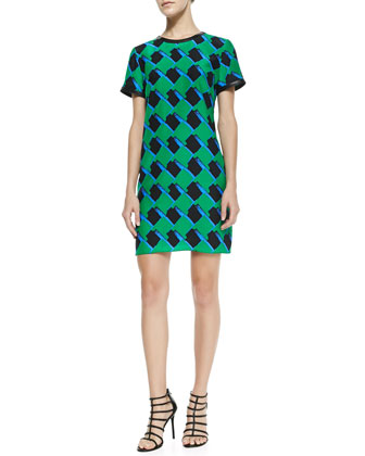 Finn Silk Printed Leather-Trim Dress