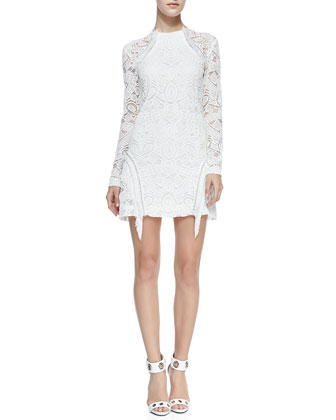 Darya Lace/Fringe Dress