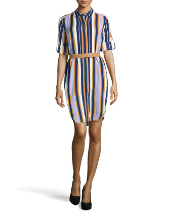 Striped Long-Sleeve Belted Shirtdress