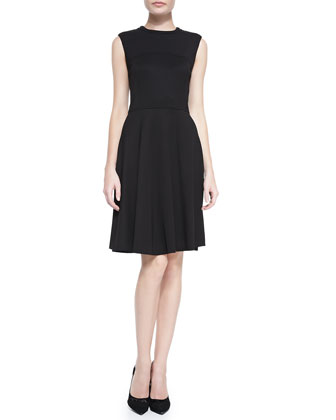 Sleeveless Seamed Ponte Dress