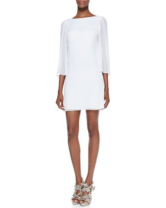 Odette Sheer-Sleeve Fitted Dress