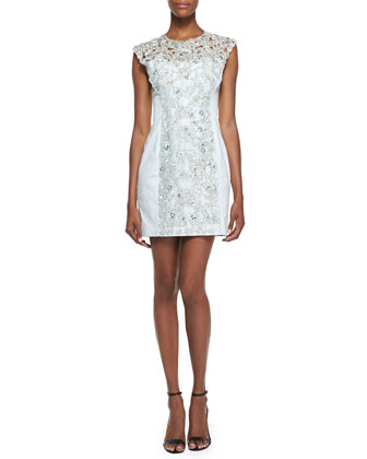 Encrusted Lace Sheath Dress, Tea Tree