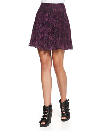 Embroidered Pleated A-Line Skirt