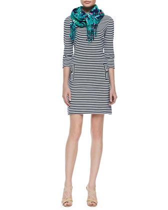 Charlene Ottoman Striped Dress & Murfee Silk-Cashmere Print Scarf