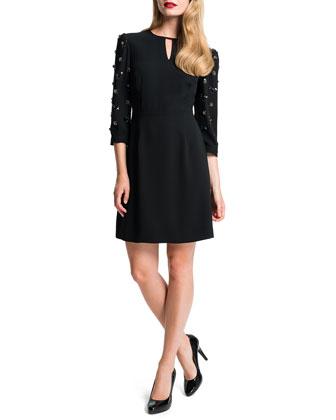 Emilian Embellished-Sleeve Dress