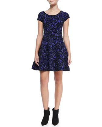Velvet-Lace A-Line Dress