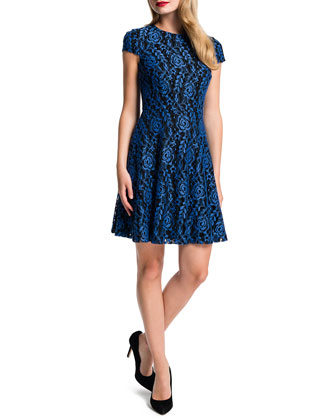 Delphine Lace Fit-and-Flare Dress