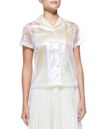 Short-Sleeve Sheer Iridescent Blouse & Pleated Iridescent A-Line Skirt
