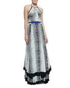 Aurora Colorblocked Komodo-Print Dress