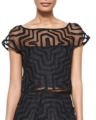 Maze-Patterned Fil Coupe Crop Top