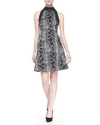 Studded Snake-Print Fit & Flare Dress