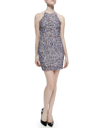 Jaden Sequined Sleeveless Dress