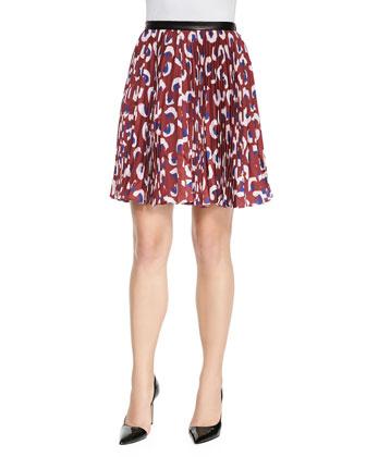 Gabriela Pleated Printed Skirt