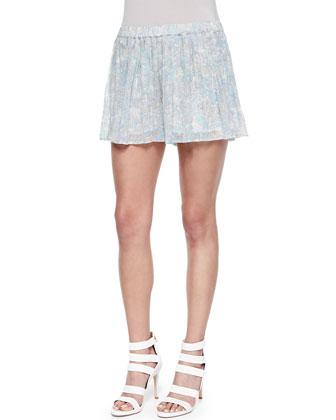 Aeidra Pleated A-Line Shorts