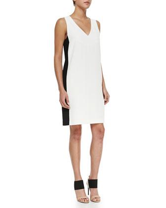 Two-Tone V-Neck Dress