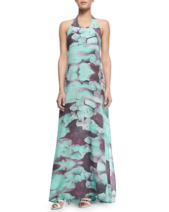 Darian Printed Halter Maxi Dress