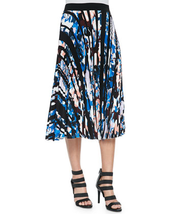 Pia Floral-Print Crop Top & Caident Pleated Printed Skirt