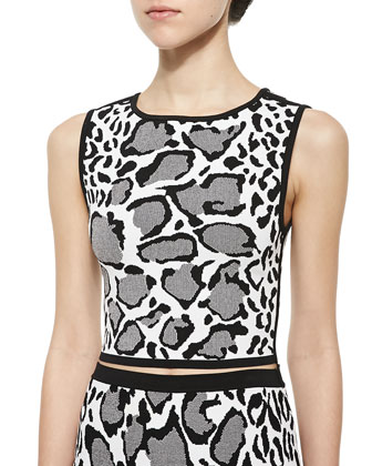 Leopard-Print Jacquard Reversible Top & Flare-Hem Leopard-Print Skirt