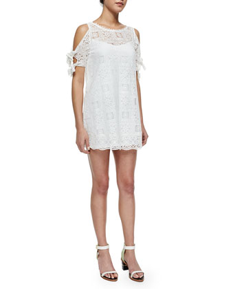 Tie-Sleeve Lace Minidress