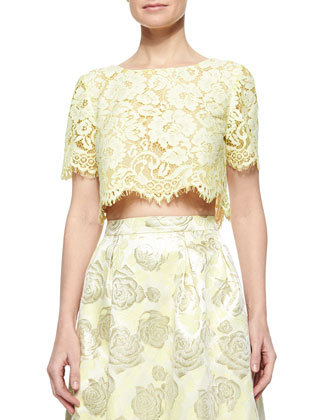Short-Sleeve Lace Crop Top, Lemongrass