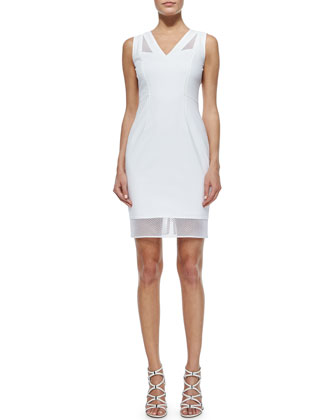 Mirella Net-Trim Sheath Dress