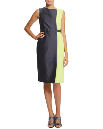 Sierra Two-Tone Belted Dress