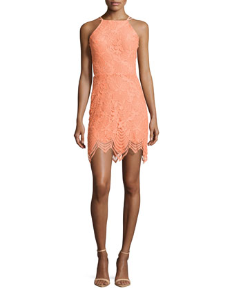 Tropical Lace Halter Minidress