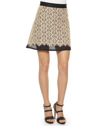 Short-Sleeve Lace Top & Sports-Mesh Lace A-line Skirt