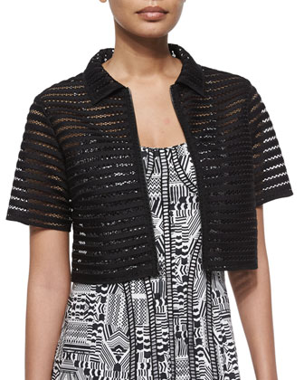 Barely There Mesh Crop Jacket & Sleeveless Truth or Flare Dress