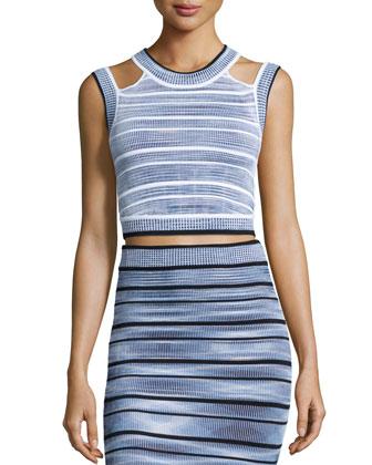 Wilhemina Striped Crop Top & Jayme Striped Pencil Skirt