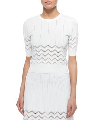 Vincent Short-Sleeve Zigzag-Stitch Top & Snyder A-line Skirt