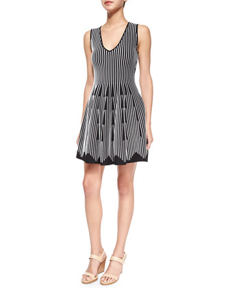 Sleeveless Linear Flare Dress