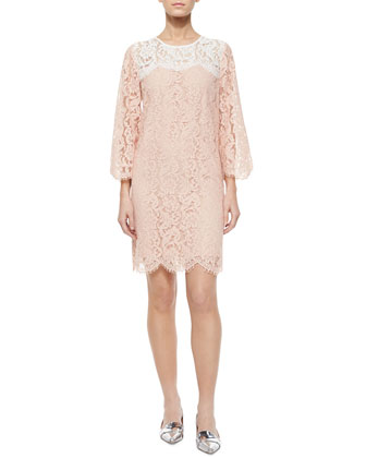Kreen Lace Shift Dress, Blush