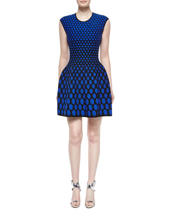 Sleeveless Polka-Dot Fit-and-Flare Dress, Blue/Black