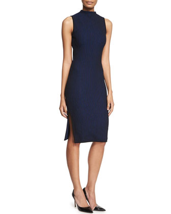 Sleeveless Turtleneck Ribbed Sheath Dress