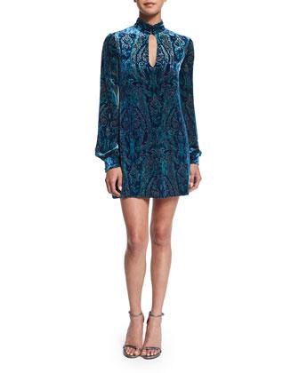 Long-Sleeve Velvet Paisley Dress
