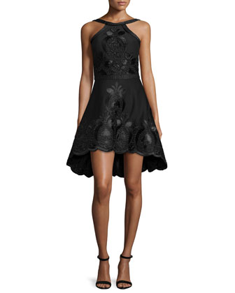 Valeria Sleeveless Embroidered A-Line Dress, Black