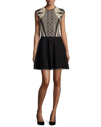 Jenkin Embroidered-Top Skate Dress, Black