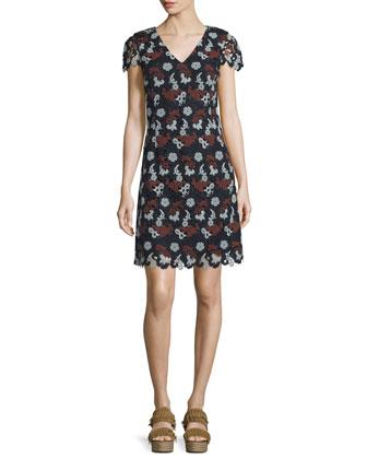 Cap-Sleeve Lace Sheath Dress, Medium Navy/Sage