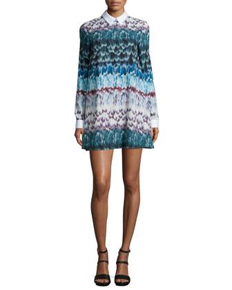 Maris Long-Sleeve Printed Babydoll Dress, Multi Colors