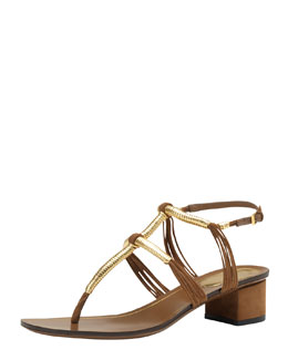 Gucci Low-Heel Thong Sandal, Brown